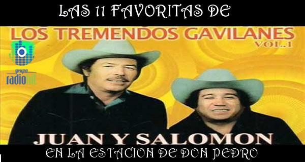 Tremendos Gavilanes