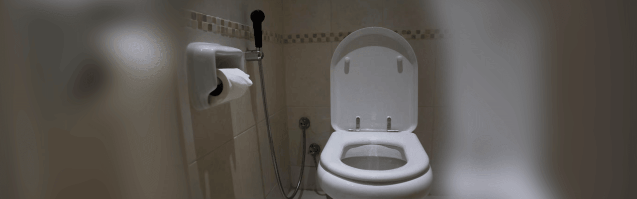 Best Bidet Toilet Seats By Top Home Guide 2020