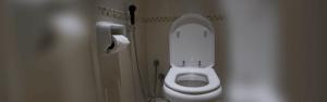 Best Bidet Toilet Seats