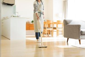 cordless vacuum Cleaners
