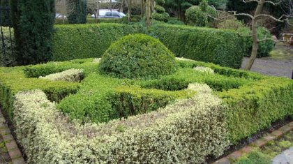 topiary-picures-3