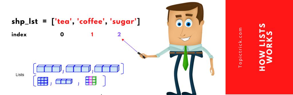 How Python List Works