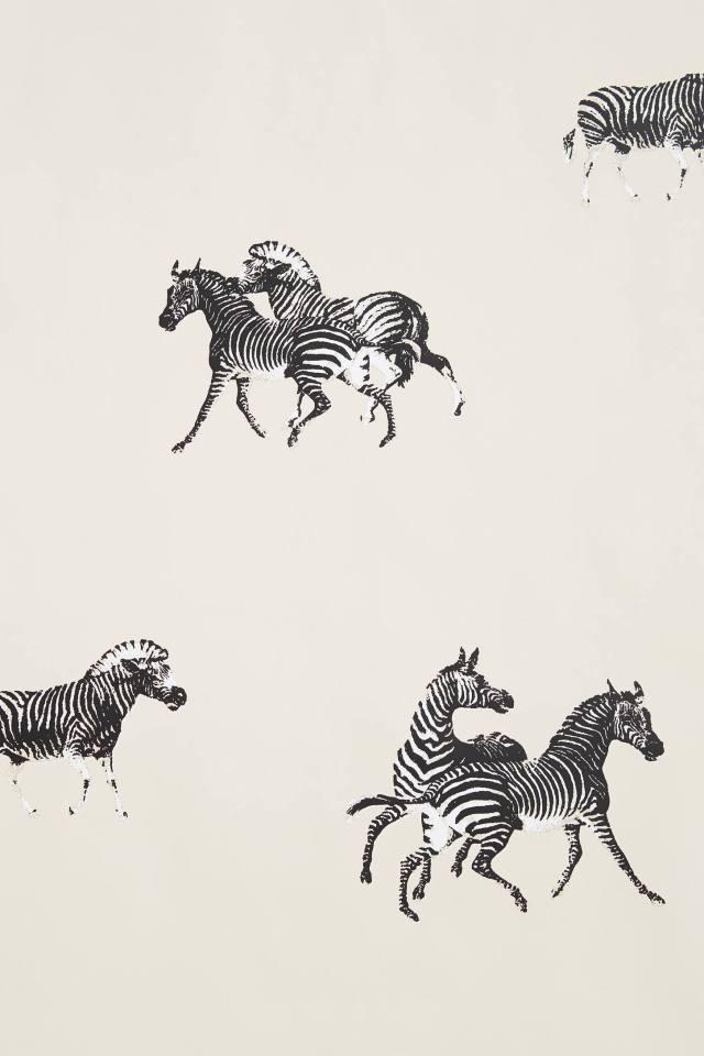 Cavorting Zebras Wallpaper
