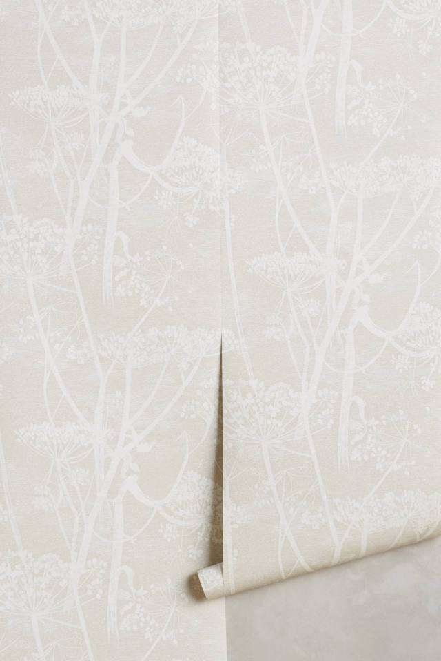 Queen Anne's Lace Wallpaper
