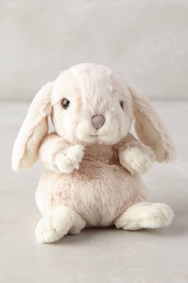 Baby Zora Bunny