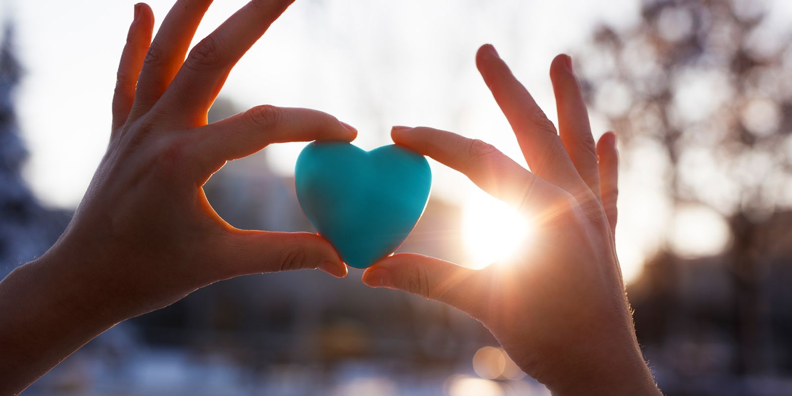 Image of two hands holding a blue heart for the charity video production page