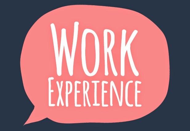 Kinh nghiệm làm việc và thành tích