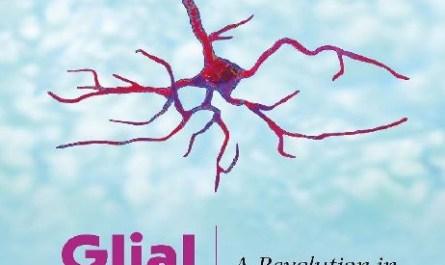 Glial man a revolution in neuroscience pdf