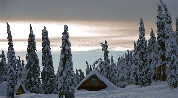 Winter Activities #2