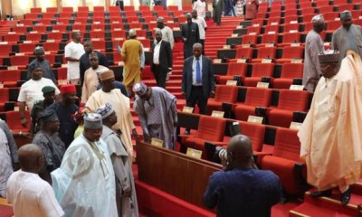 Senate strikes out bill seeking six-year term for President, Governors