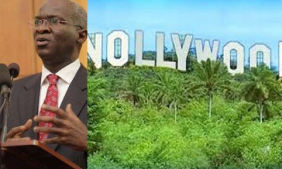 Fashola blasts Nollywood topnaija