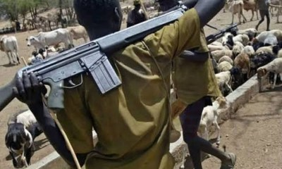 Suspected herdsmen kill three in midnight attack on Plateau community