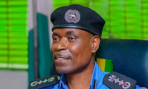 Direct your request for bail to panel, IGP tells Magu