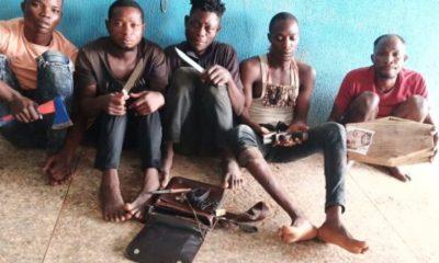 Ogun herbalist, four other notorious robbers arrested topnaija.ng