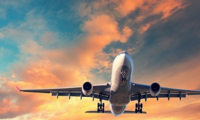 Domestic flights to resume July 8th