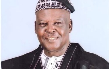 Dominic Adegbola Lagos PDP Chairman