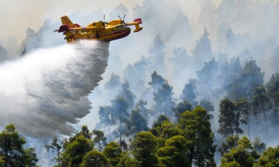 Firefighting plane crashes on Greek island topnaija 1