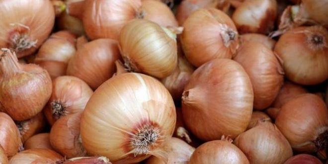 The health benefits of Onions are unbelievable