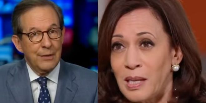 Chris Wallace Blasts Kamala Harris For Border Trip Fail – Proposed 'No Answers' For Immigrant 'Flood'