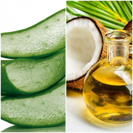 Moisturize Your Skin With Homemade Aloe Vera And Coconut
