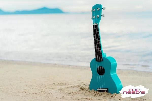 ukulele price
