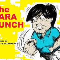 THE  STORY BEHIND THE SARA PUNCH