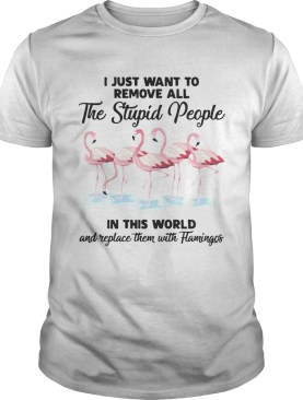 I just wantto remove allthe stupid people in this world and shirt