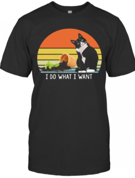 Black Cat I Do What I Want Vintage T-Shirt
