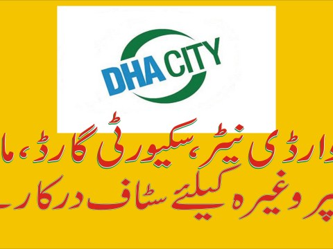 jobs in dha