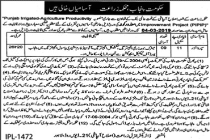 Jobs in Agriculture Department 2019