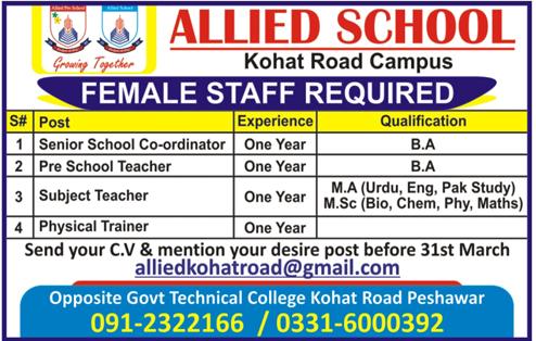 Jobs in Allied School 2019