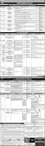 Jobs in Punjab Public Commission 2018