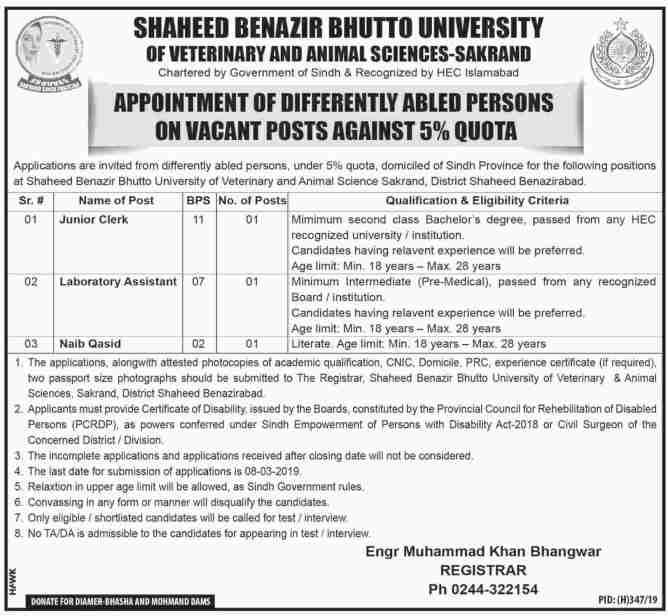Jobs in Shaheed Benazir Bhutto University 2019