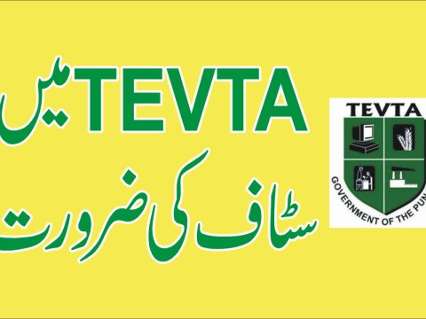 jobs in TEVTA