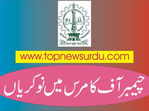 jobs in chamber of commerce 2019