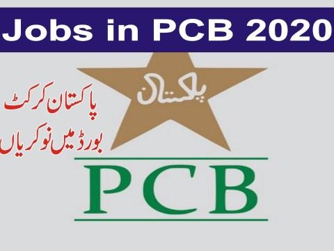 jobs in pcb