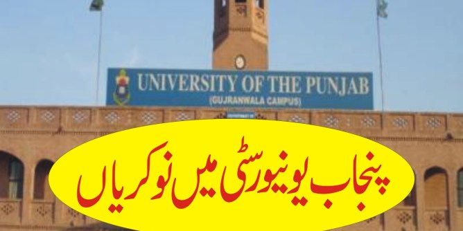 jobs in punjab university