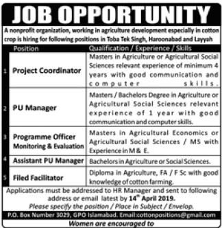 universities jobs 2019