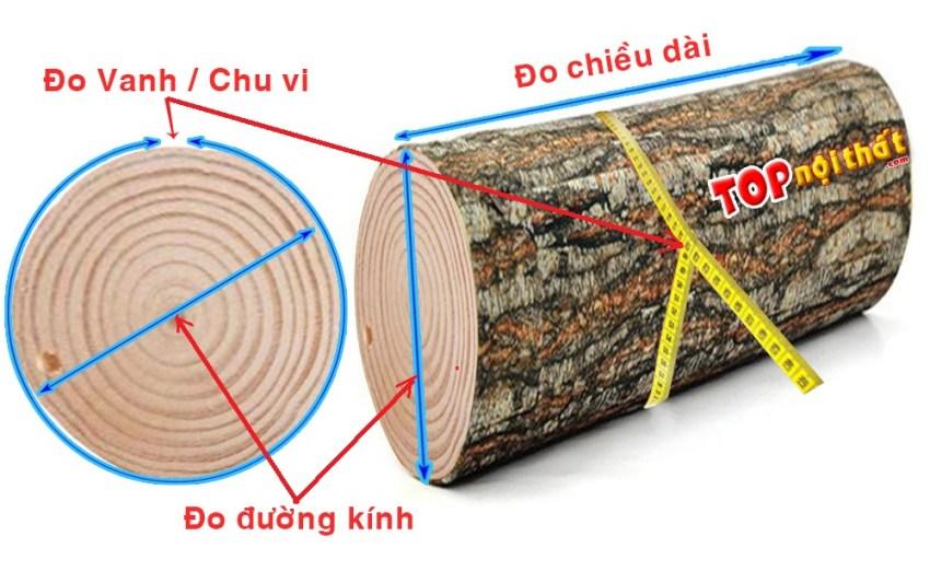 Cách đo và tính mét khối gỗ tròn theo vanh và theo đường kính