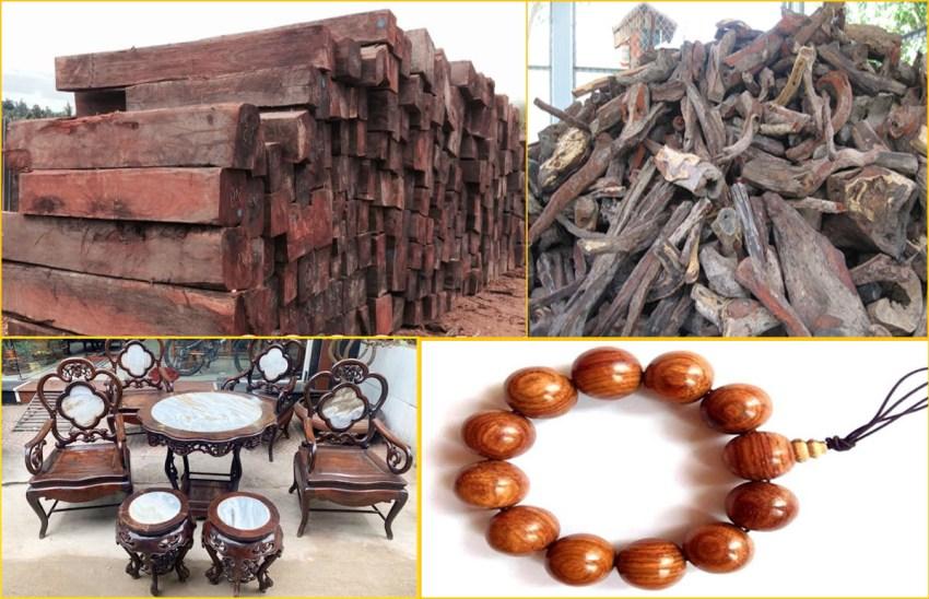 Gỗ trắc thuộc nhóm I là loại gỗ quý