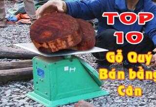 Giá bán 10 loại gỗ đắt nhất Việt Nam