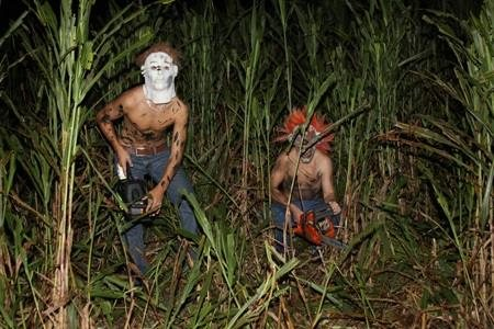 https://www.haunts.com/newberrycornfieldmaze