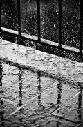 Rain 27