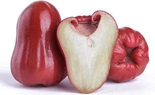 Taiwan Wax Apple