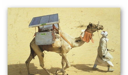 The Camel Fridge Project