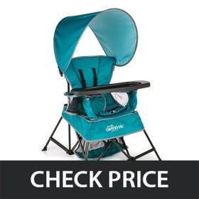 Baby Delight Go with Me Canopy Chair