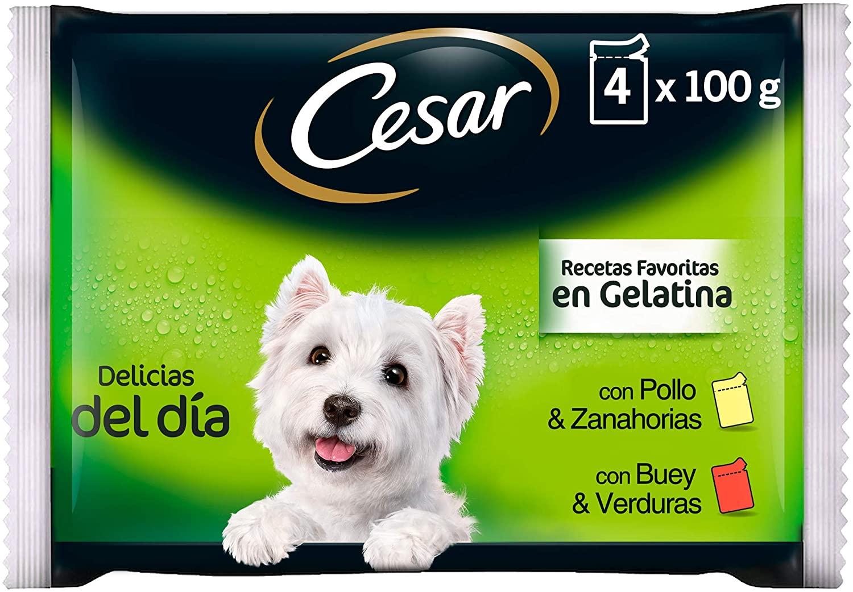pienso húmedo Cesar