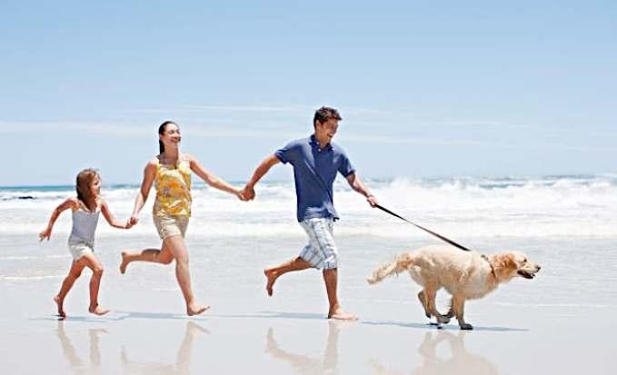 Playas que admiten perros en España - familia con su perro