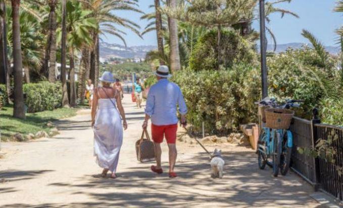 Hoteles dog friendly en Málaga