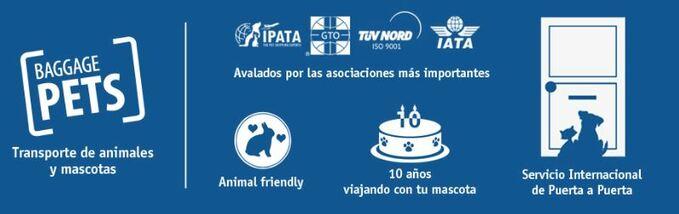 Baggagepets, empresa de transporte de perros